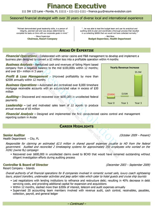executive resume sample resume evolution - Executive Resume Sample